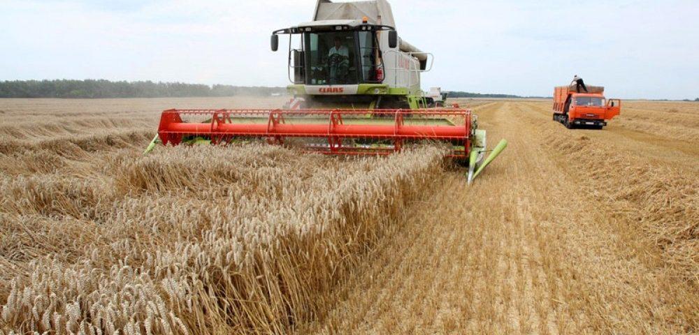 Росагролизинг помог собрать урожай российским аграриям