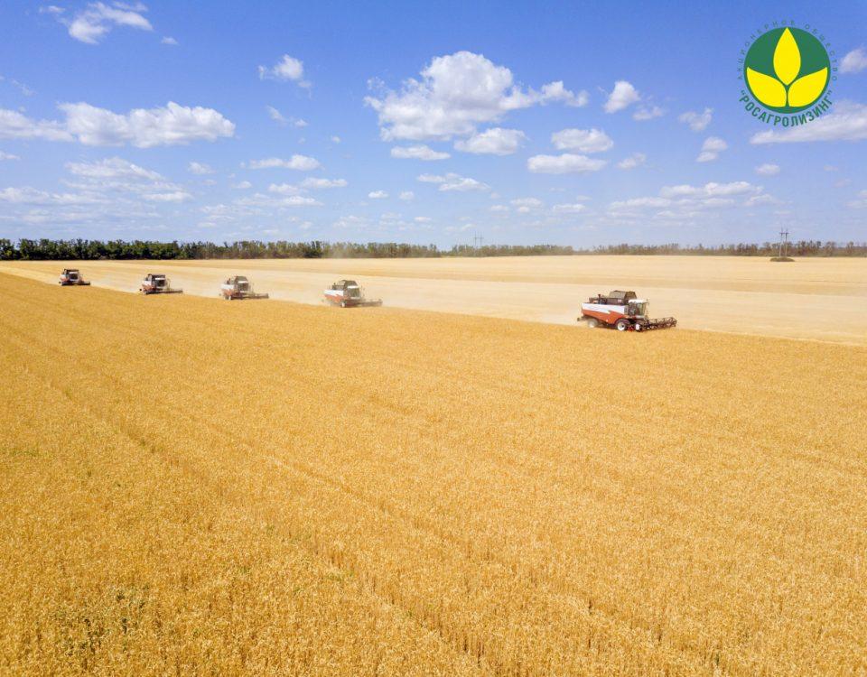 Поздравление генерального директора Росагролизинга Павла Косова с Днем работника сельского хозяйства